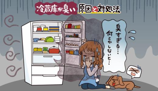【保存版】冷蔵庫が臭い原因と無臭にする掃除方法