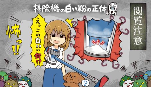 【閲覧注意】ダイソン掃除機から取れる白い粉の正体を徹底解説