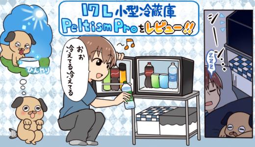 【レビュー】Peltism(ペルチィズム)の17L小型冷蔵庫の使用感や良い点・悪い点を分かりやすく解説【静音性も抜群】